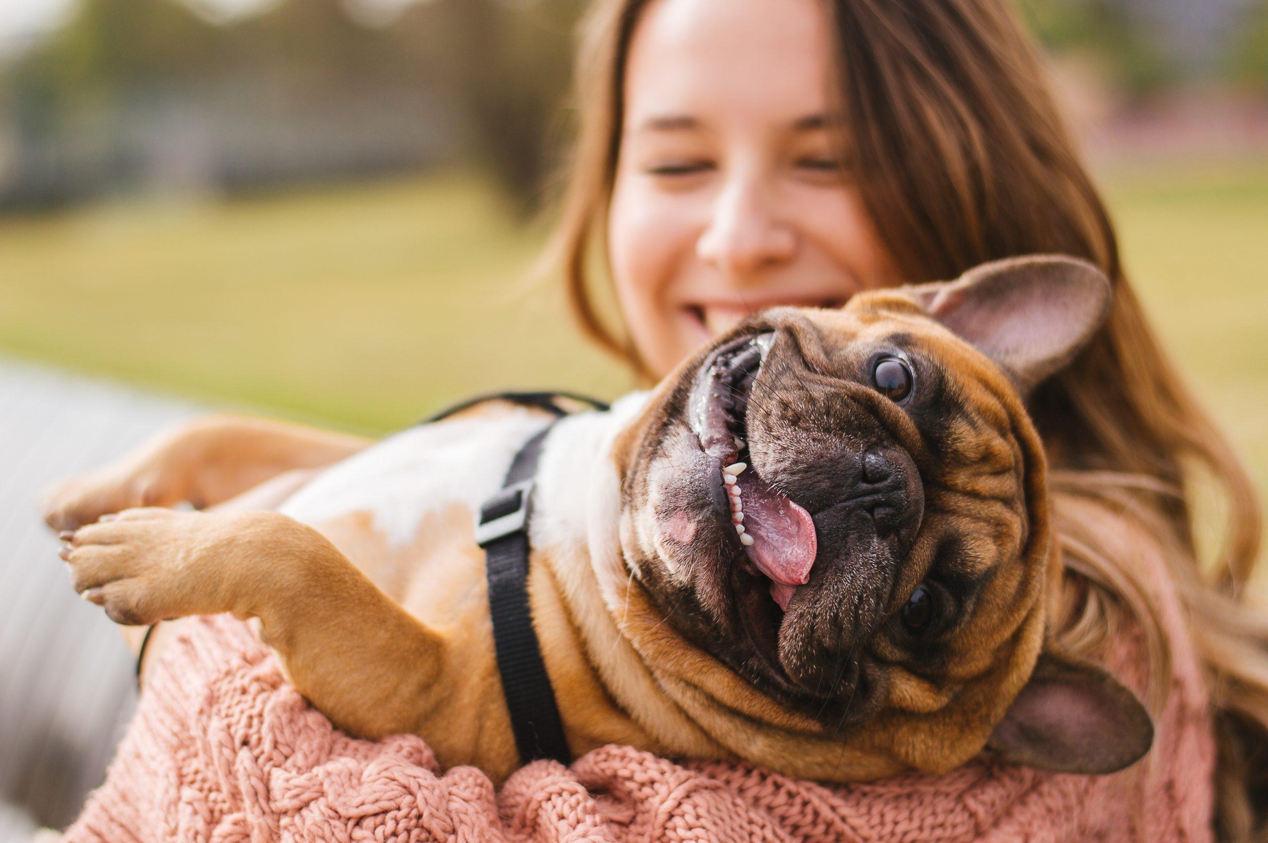 Custódia compartilhada e pensão alimentícia para animais de estimação